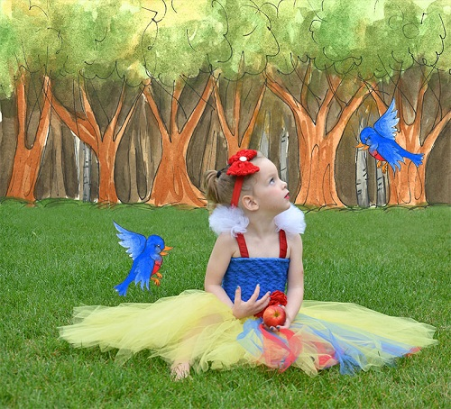 Tulle Snow White Costume | DIY Snow White Costume Ideas For Halloween | snow white costume | snow white costume diy